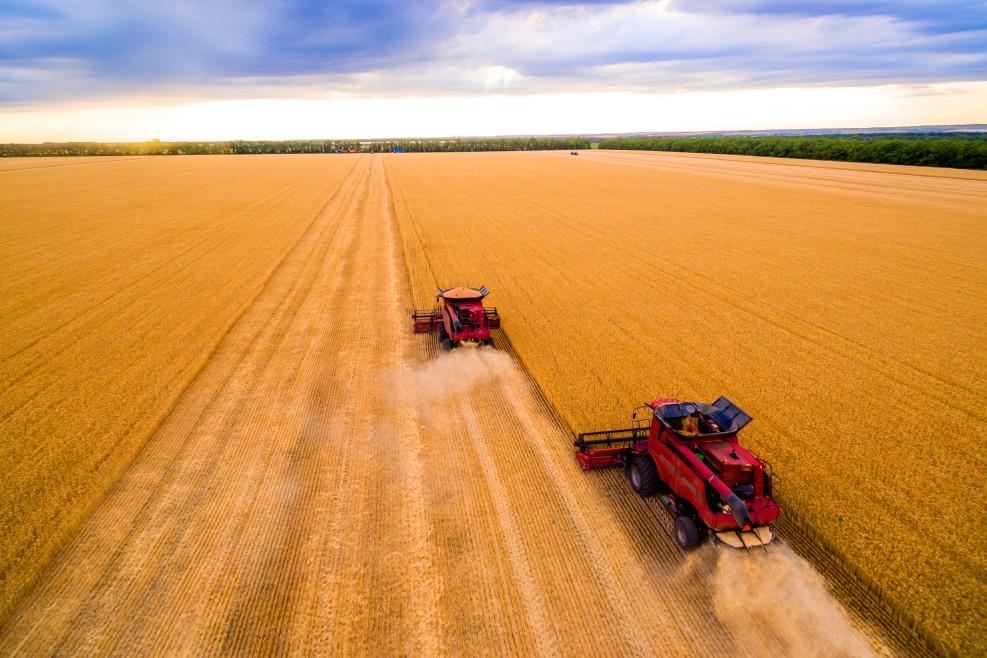 Precízne poľnohospodárstvo